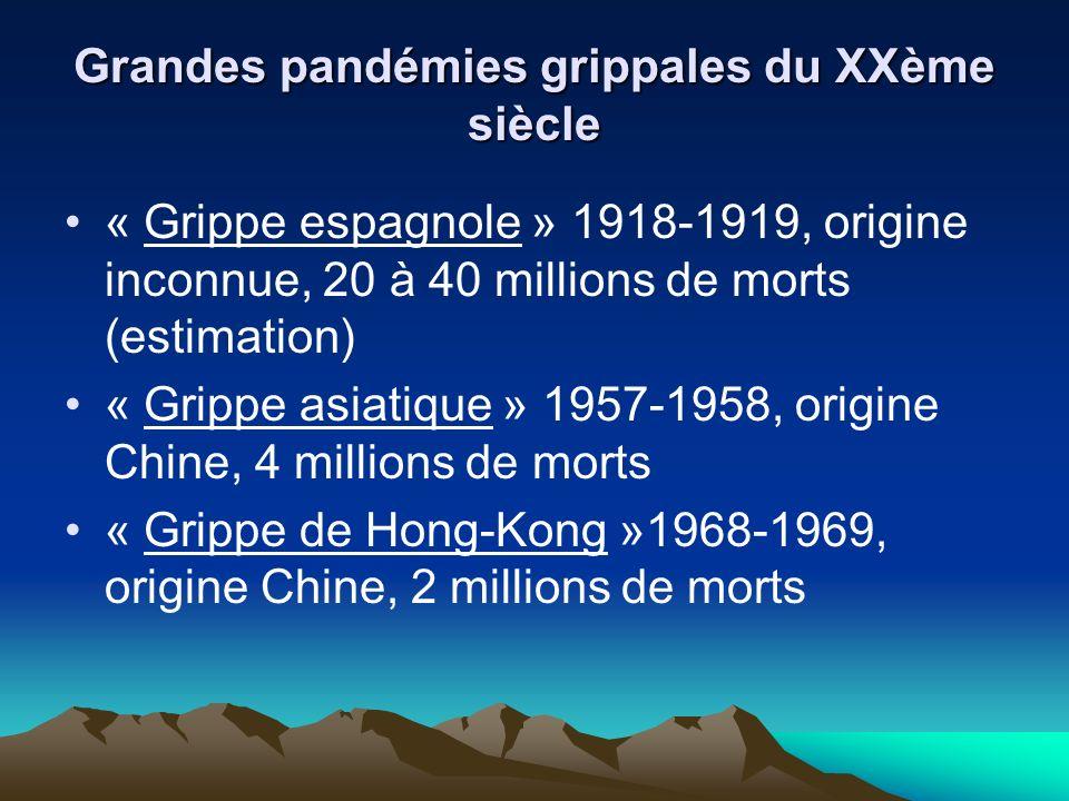 Grandes pandémies grippales du XXème siècle « Grippe espagnole » 1918-1919, origine inconnue, 20 à 40 millions de morts (estimation) « Grippe asiatique » 1957-1958, origine Chine, 4 millions de morts « Grippe de Hong-Kong »1968-1969, origine Chine, 2 millions de morts