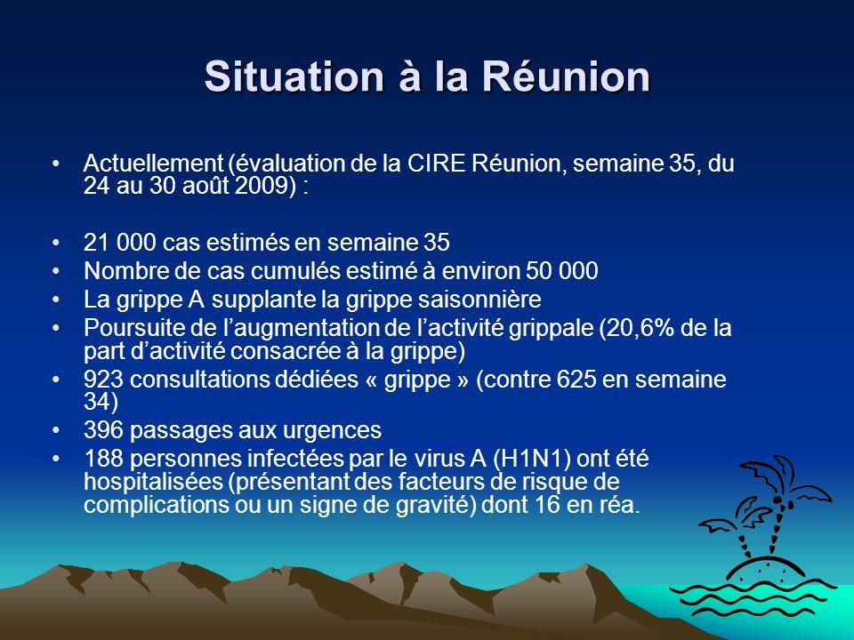Situation à la Réunion Actuellement (évaluation de la CIRE Réunion, semaine 35, du 24 au 30 août 2009) : 21 000 cas estimés en semaine 35 Nombre de ca
