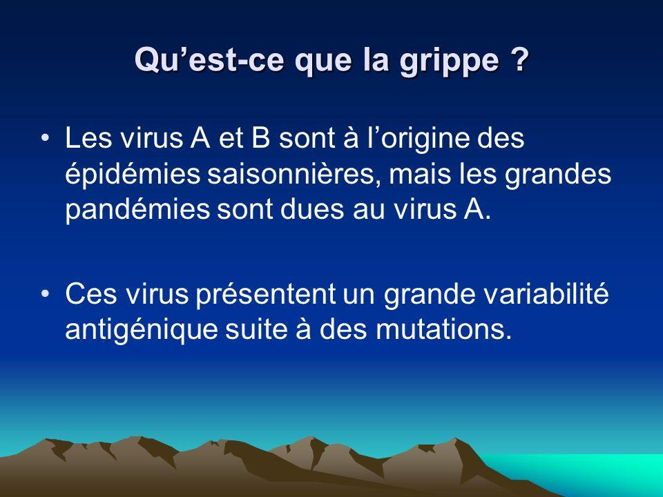Quest-ce que la grippe ? Les virus A et B sont à lorigine des épidémies saisonnières, mais les grandes pandémies sont dues au virus A. Ces virus prése