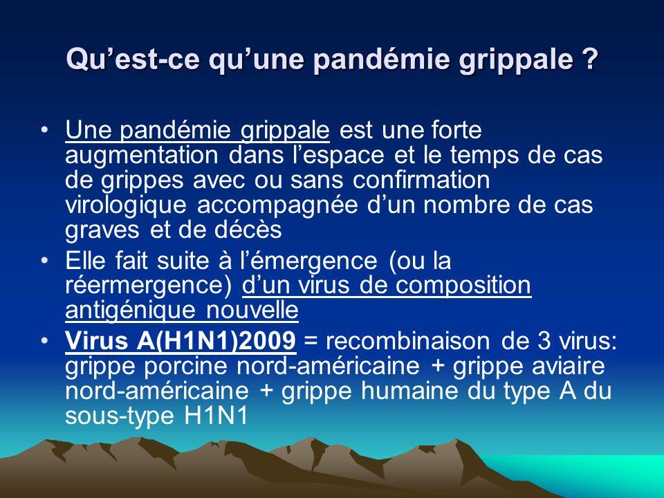 Quest-ce quune pandémie grippale ? Une pandémie grippale est une forte augmentation dans lespace et le temps de cas de grippes avec ou sans confirmati