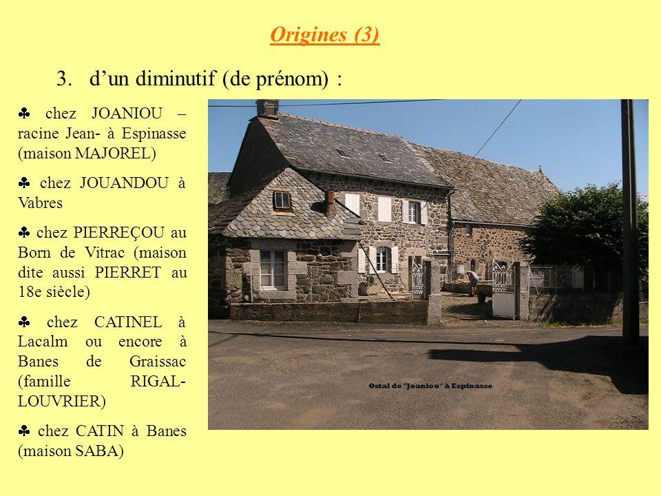 Origines (3) 3.dun diminutif (de prénom) : chez JOANIOU – racine Jean- à Espinasse (maison MAJOREL) chez JOUANDOU à Vabres chez PIERREÇOU au Born de Vitrac (maison dite aussi PIERRET au 18e siècle) chez CATINEL à Lacalm ou encore à Banes de Graissac (famille RIGAL- LOUVRIER) chez CATIN à Banes (maison SABA)