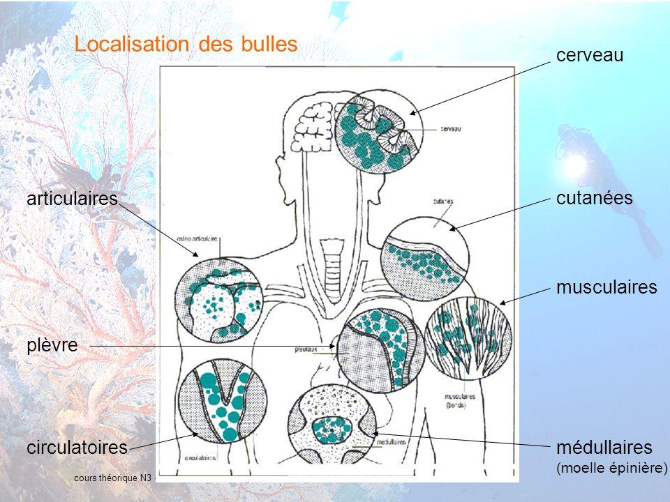 11 interne Orange Localisation des bulles cours théorique N3 – Accidents de décompression et Froid cerveau cutanées musculaires médullaires (moelle épinière) articulaires circulatoires plèvre