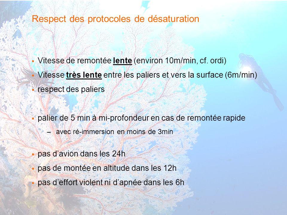 19 interne Orange Respect des protocoles de désaturation Vitesse de remontée lente (environ 10m/min, cf.