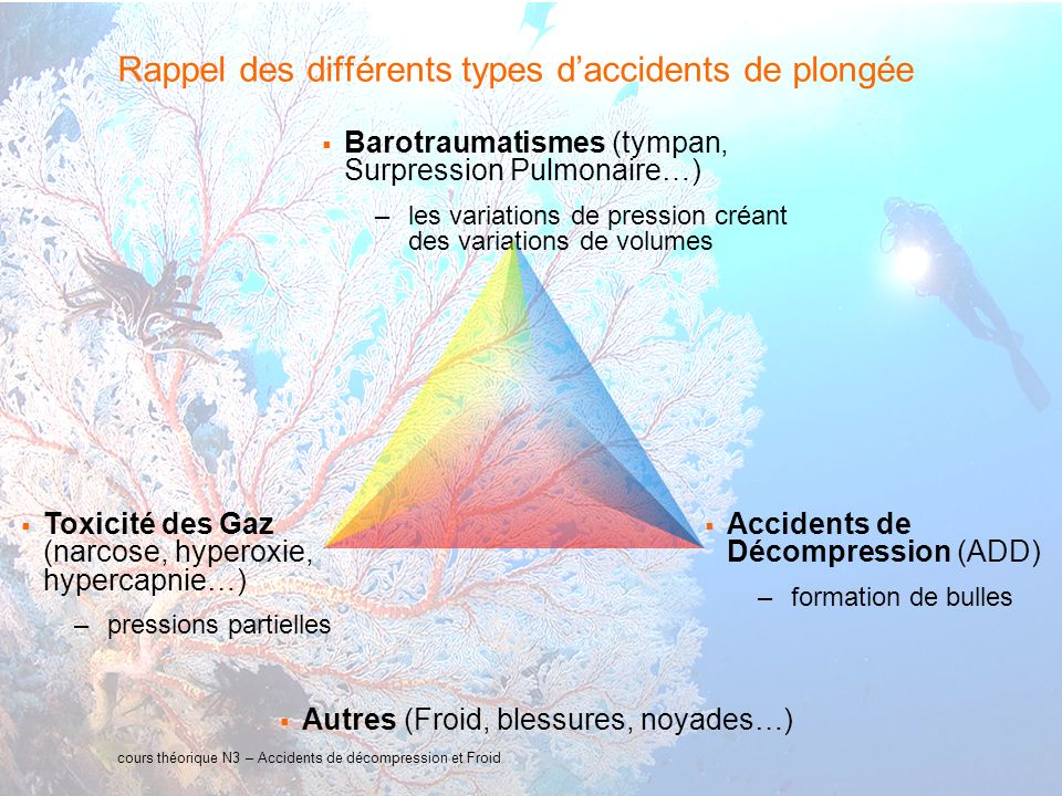 5 interne Orange Rappel des différents types daccidents de plongée Barotraumatismes (tympan, Surpression Pulmonaire…) –les variations de pression créant des variations de volumes cours théorique N3 – Accidents de décompression et Froid Toxicité des Gaz (narcose, hyperoxie, hypercapnie…) –pressions partielles Accidents de Décompression (ADD) –formation de bulles Autres (Froid, blessures, noyades…)