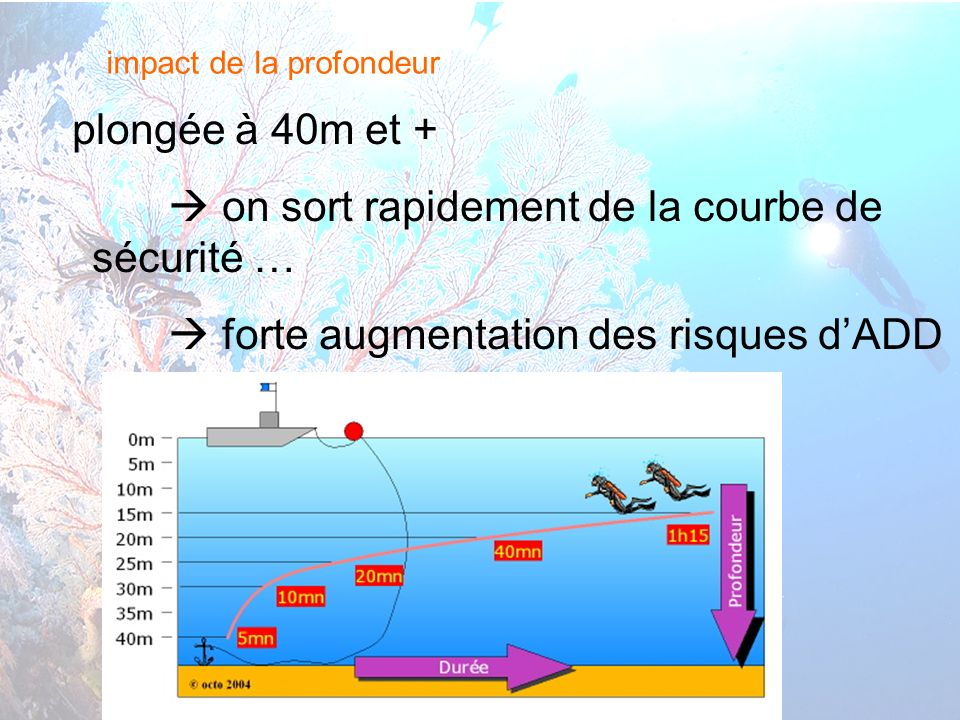 6 interne Orange impact de la profondeur plongée à 40m et + on sort rapidement de la courbe de sécurité … forte augmentation des risques dADD cours théorique N3 – Accidents de décompression et Froid