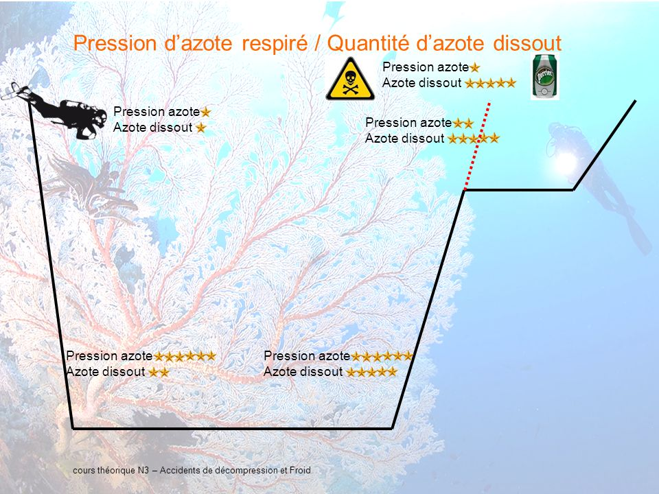 10 interne Orange Définition Un accident de décompression peut se produire lors de la remontée d un plongeur à la surface.