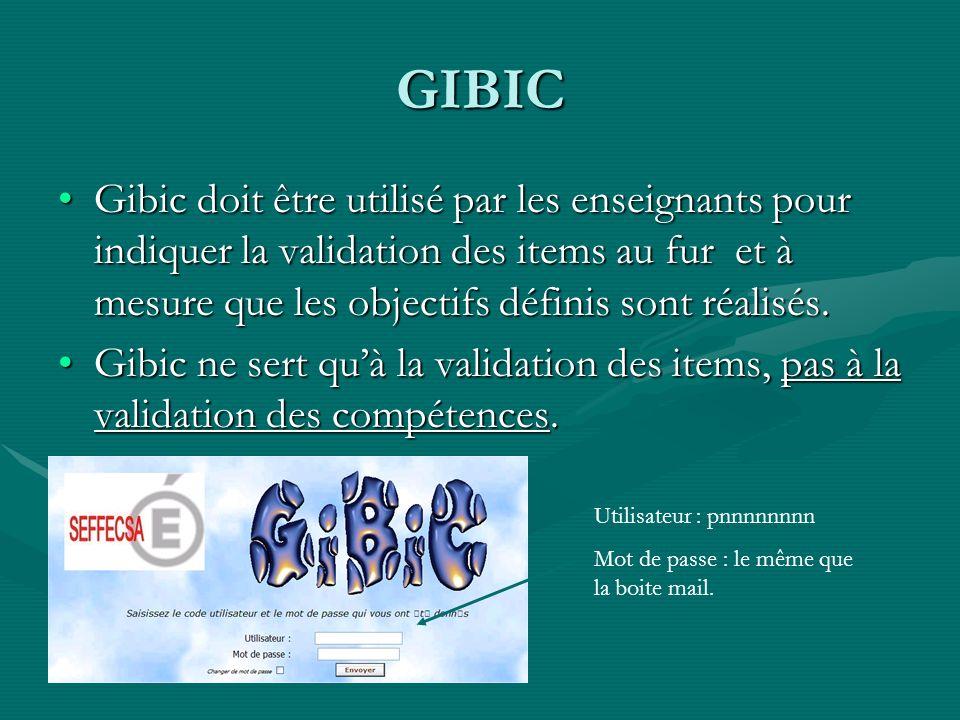 GIBIC Gibic doit être utilisé par les enseignants pour indiquer la validation des items au fur et à mesure que les objectifs définis sont réalisés.Gibic doit être utilisé par les enseignants pour indiquer la validation des items au fur et à mesure que les objectifs définis sont réalisés.