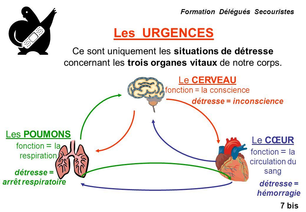 Les URGENCES Formation Délégués Secouristes Ce sont uniquement les situations de détresse concernant les trois organes vitaux de notre corps. Le CERVE