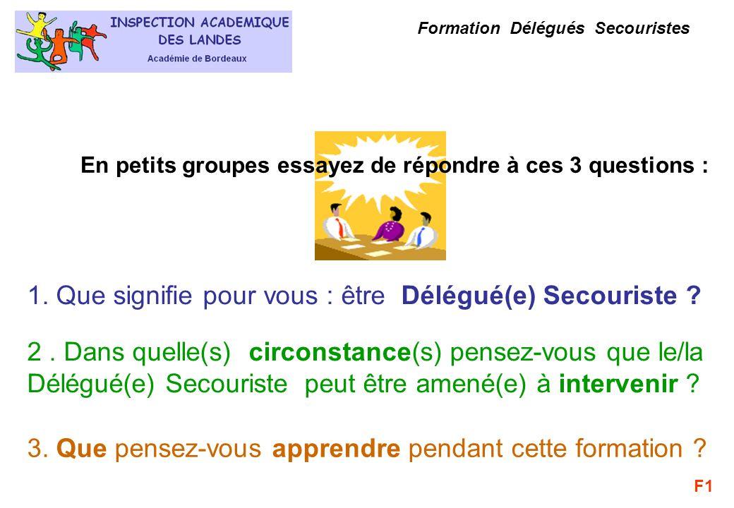 Formation Délégués Secouristes 1. Que signifie pour vous : être Délégué(e) Secouriste ? 2. Dans quelle(s) circonstance(s) pensez-vous que le/la Délégu