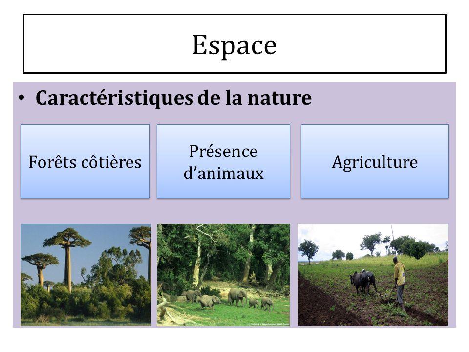 Caractéristiques de la nature Forêts côtières Présence danimaux Agriculture