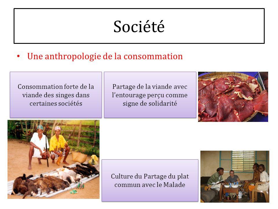 Société Une anthropologie de la consommation Consommation forte de la viande des singes dans certaines sociétés Partage de la viande avec lentourage p