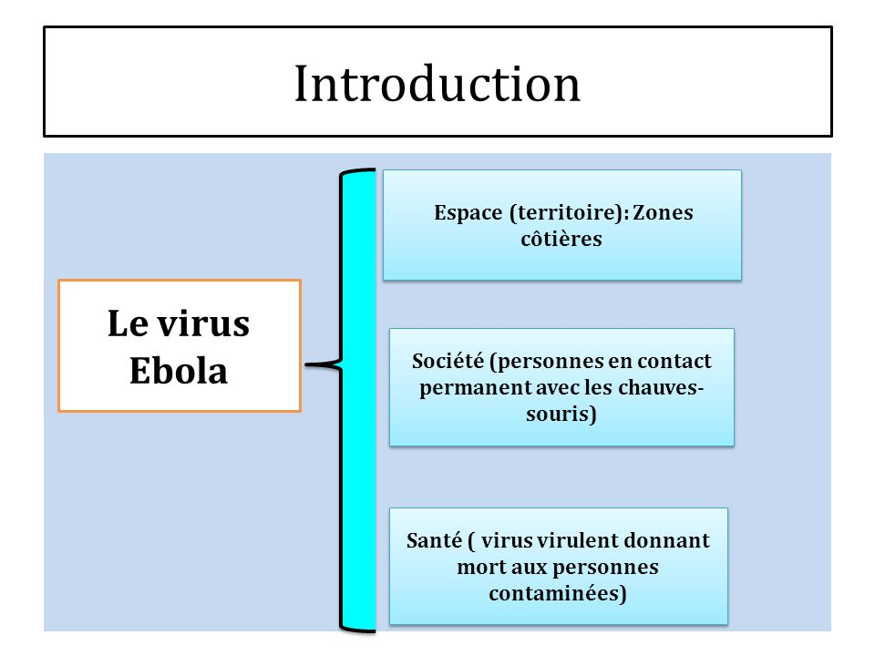 Introduction Virus ébola EspaceSociétéSanté