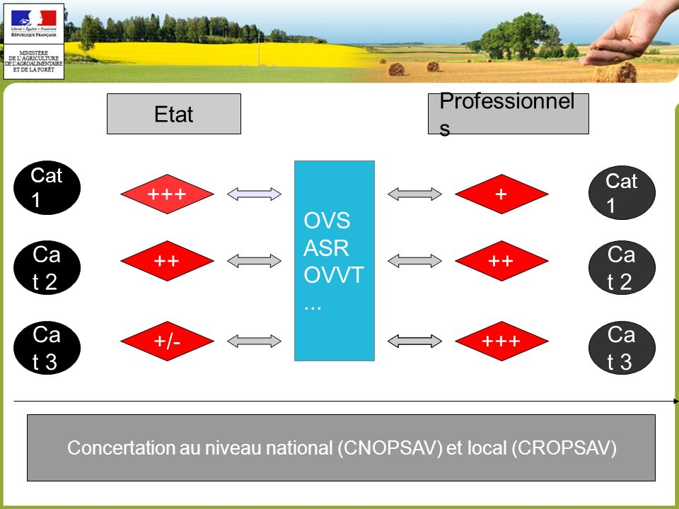 Cat 2 Cat 1 Etat Professionnel s Concertation au niveau national (CNOPSAV) et local (CROPSAV) Cat 1 Ca t 2 Ca t 3 + ++ OVS ASR OVVT... +++ ++ ++++/-