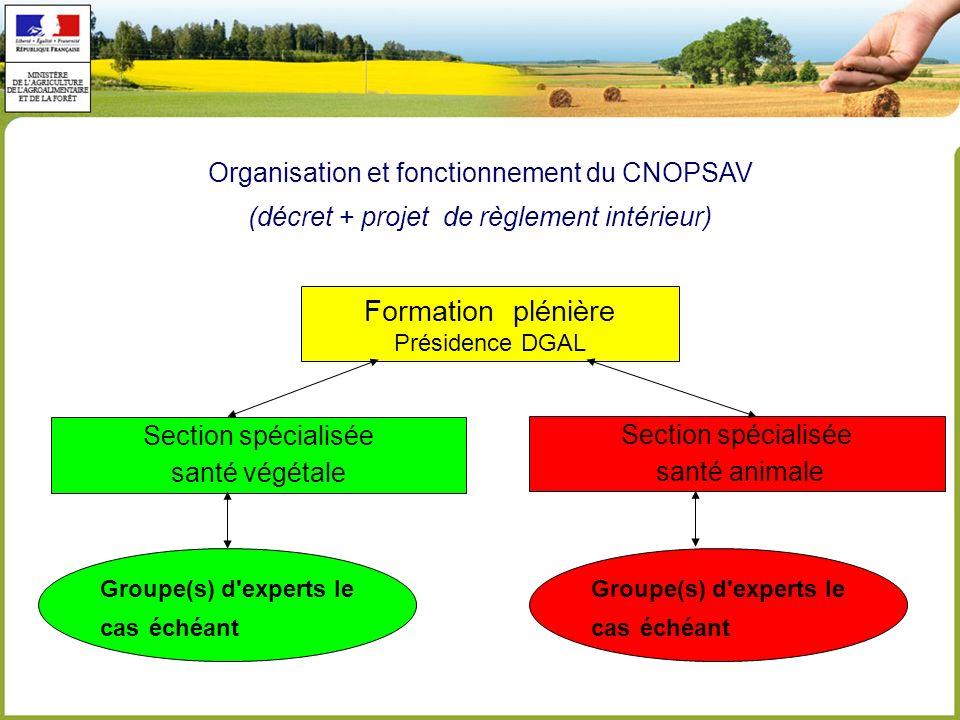 Organisation et fonctionnement du CNOPSAV (décret + projet de règlement intérieur) Formation plénière Présidence DGAL Section spécialisée santé végétale Section spécialisée santé animale Groupe(s) d experts le cas échéant