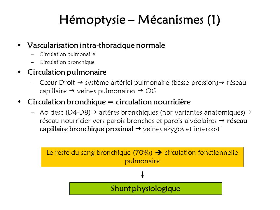 Hémoptysie – Mécanismes (1) Vascularisation intra-thoracique normale –Circulation pulmonaire –Circulation bronchique Circulation pulmonaire –Cœur Droi