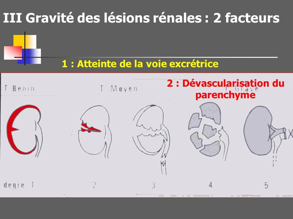 II Rappel des mécanismes des lésions rénales *Choc direct Fracture de côtes Fracture de L1 *Mécanismes de décélération Etirement Hyperextension