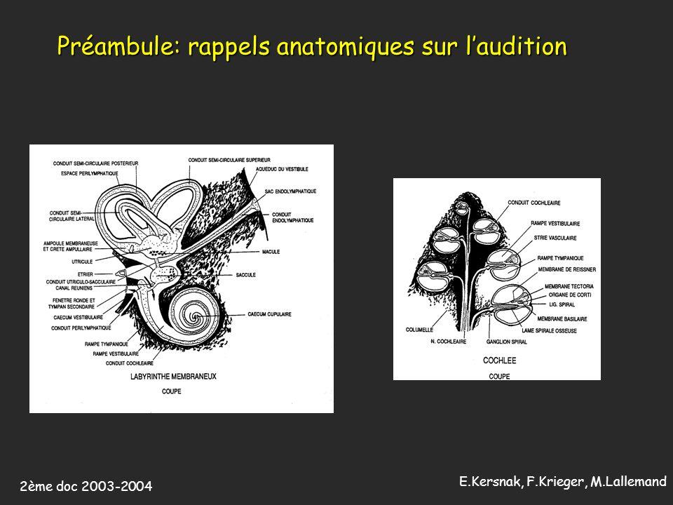 2ème doc 2003-2004 E.Kersnak, F.Krieger, M.Lallemand Préambule: rappels histologiques sur laudition