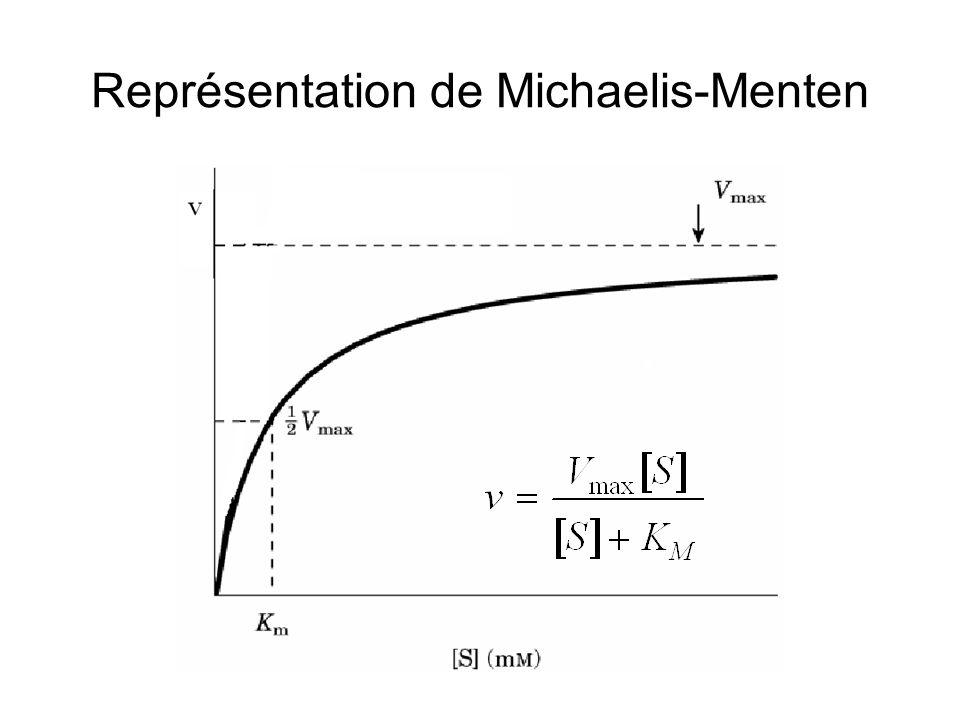 Représentation de Michaelis-Menten