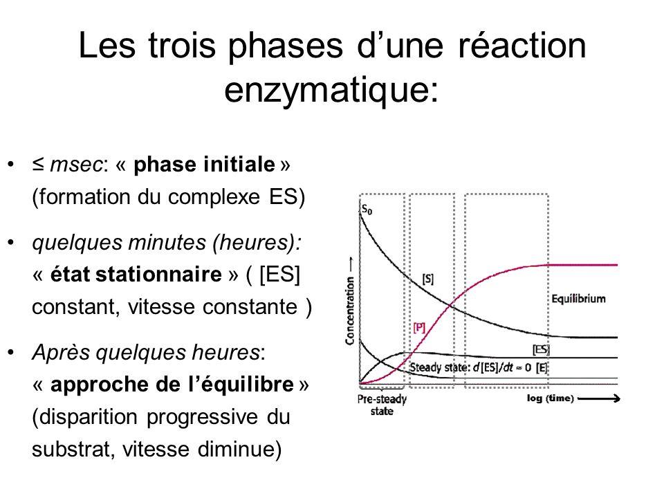 Les trois phases dune réaction enzymatique: msec: « phase initiale » (formation du complexe ES) quelques minutes (heures): « état stationnaire » ( [ES] constant, vitesse constante ) Après quelques heures: « approche de léquilibre » (disparition progressive du substrat, vitesse diminue)