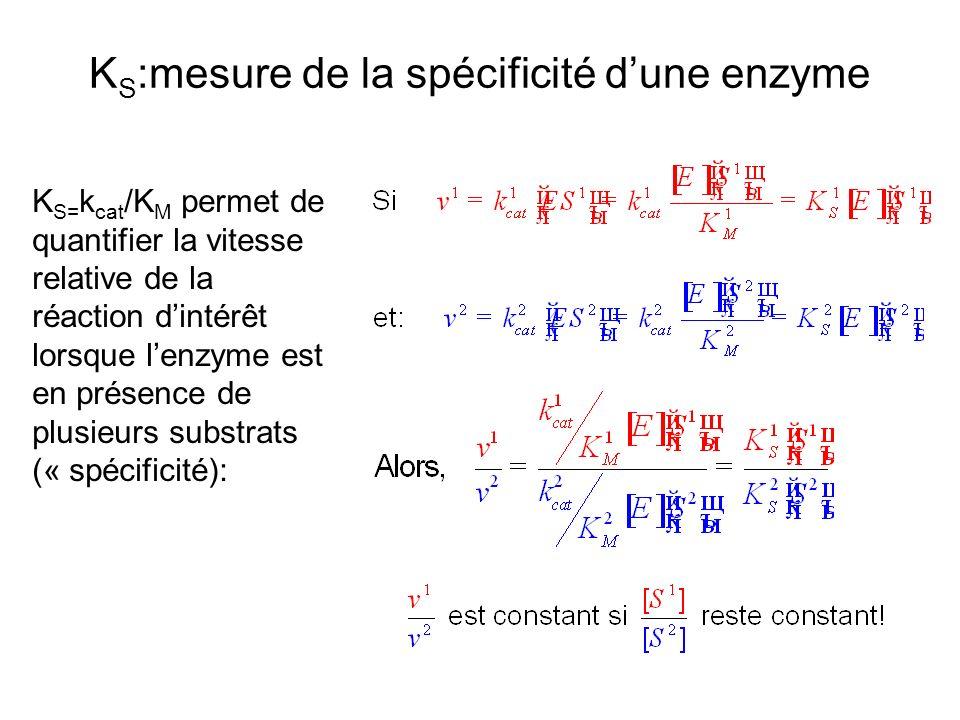 K S :mesure de la spécificité dune enzyme K S= k cat /K M permet de quantifier la vitesse relative de la réaction dintérêt lorsque lenzyme est en présence de plusieurs substrats (« spécificité):