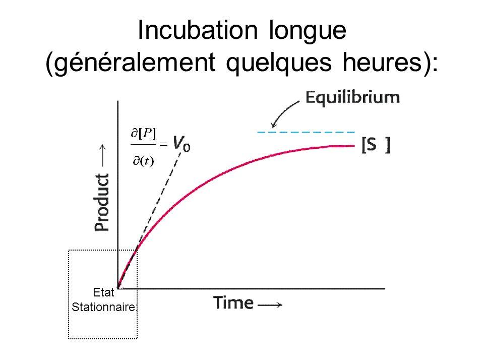 Incubation longue (généralement quelques heures): Etat Stationnaire: