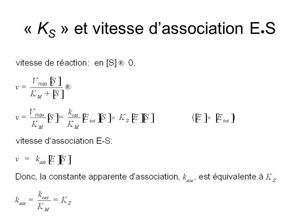 « K S » et vitesse dassociation E S