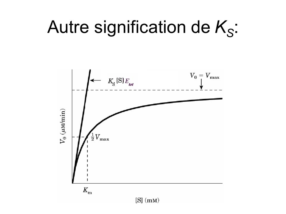 Autre signification de K S :