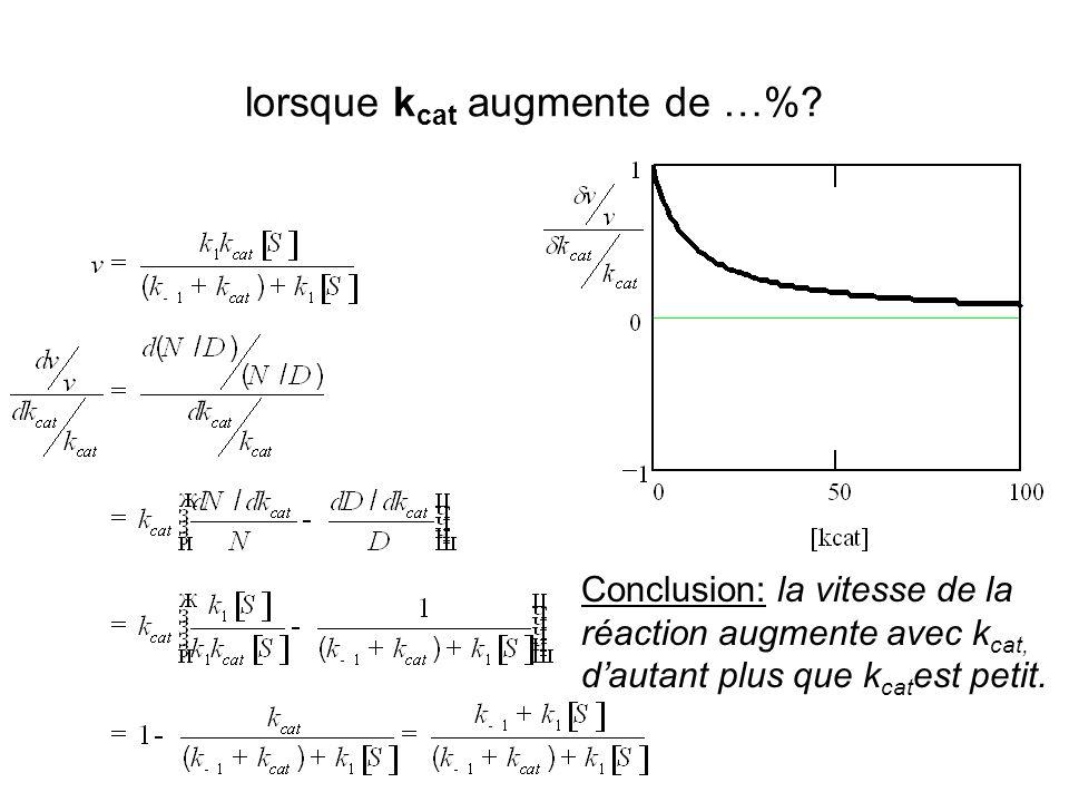 Conclusion: la vitesse de la réaction augmente avec k cat, dautant plus que k cat est petit.