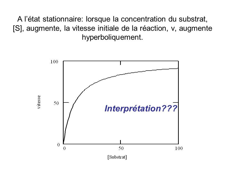 A létat stationnaire: lorsque la concentration du substrat, [S], augmente, la vitesse initiale de la réaction, v, augmente hyperboliquement.