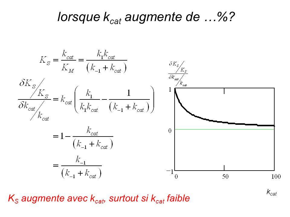 k cat K S augmente avec k cat, surtout si k cat faible lorsque k cat augmente de …%?