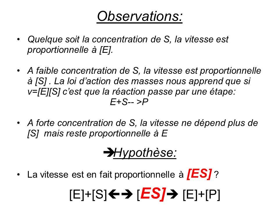 Observations: Quelque soit la concentration de S, la vitesse est proportionnelle à [E].