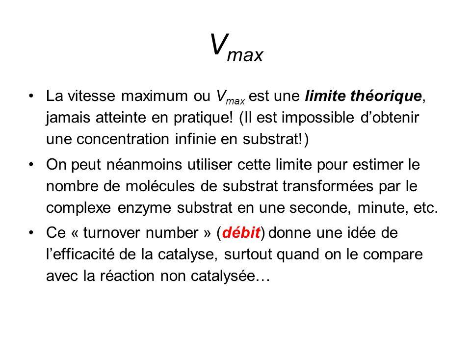 V max La vitesse maximum ou V max est une limite théorique, jamais atteinte en pratique.