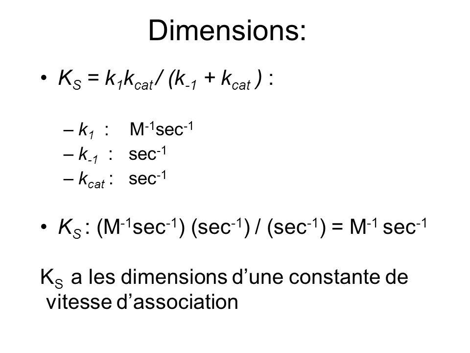 K S = k 1 k cat / (k -1 + k cat ) : –k 1 : M -1 sec -1 –k -1 : sec -1 –k cat : sec -1 K S : (M -1 sec -1 ) (sec -1 ) / (sec -1 ) = M -1 sec -1 K S a les dimensions dune constante de vitesse dassociation Dimensions: