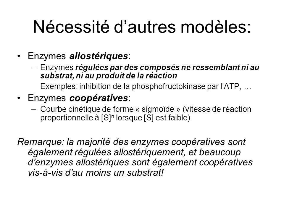Nécessité dautres modèles: Enzymes allostériques: –Enzymes régulées par des composés ne ressemblant ni au substrat, ni au produit de la réaction Exemples: inhibition de la phosphofructokinase par lATP, … Enzymes coopératives: –Courbe cinétique de forme « sigmoïde » (vitesse de réaction proportionnelle à [S] n lorsque [S] est faible) Remarque: la majorité des enzymes coopératives sont également régulées allostériquement, et beaucoup denzymes allostériques sont également coopératives vis-à-vis dau moins un substrat!