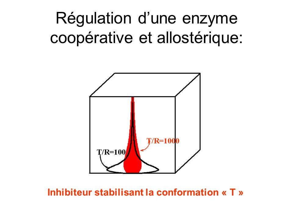 Régulation dune enzyme coopérative et allostérique: Inhibiteur stabilisant la conformation « T »