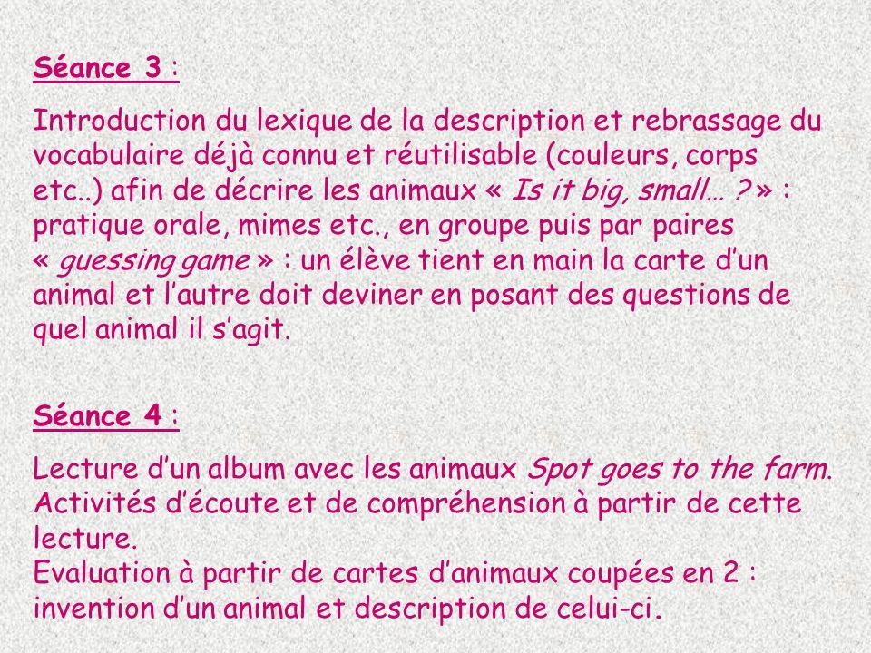 Séance 3 : Introduction du lexique de la description et rebrassage du vocabulaire déjà connu et réutilisable (couleurs, corps etc..) afin de décrire l