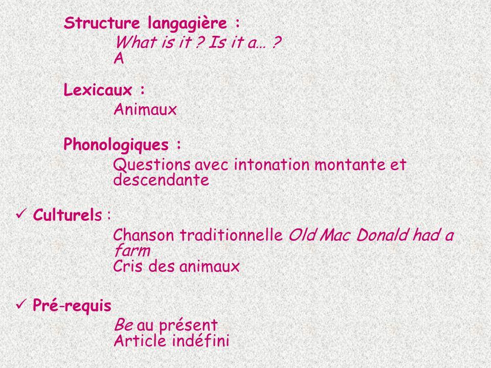 Structure langagière : What is it ? Is it a… ? A Lexicaux : Animaux Phonologiques : Questions avec intonation montante et descendante Culturels : Chan