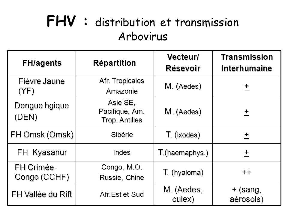 FHV : distribution et transmission Arbovirus + (sang, aérosols) M.
