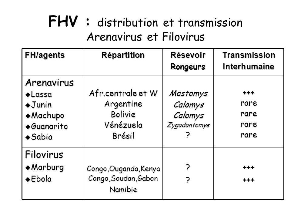 FHV : distribution et transmission Arenavirus et FilovirusTransmissionInterhumaineRésevoirRongeursRépartitionFH/agents++++++??Congo,Ouganda,KenyaCongo,Soudan,GabonNamibieFilovirus u Marburg u Ebola +++rarerarerarerareMastomysCalomysCalomysZygodontomys.