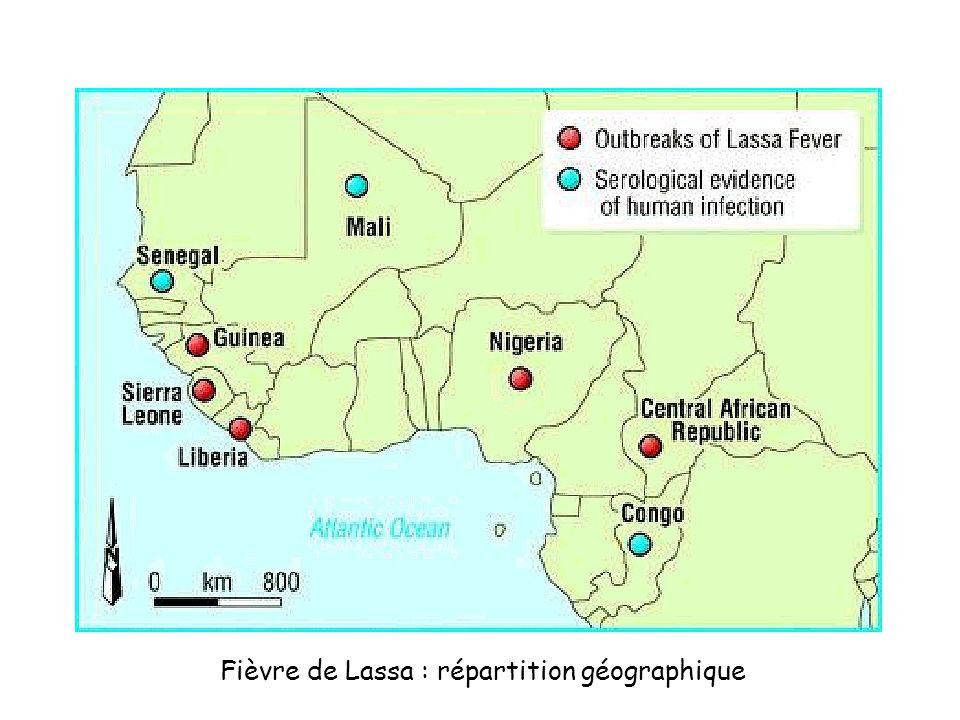 Fièvre de Lassa : répartition géographique