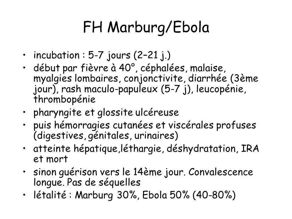 FH Marburg/Ebola incubation : 5-7 jours (2–21 j.) début par fièvre à 40°, céphalées, malaise, myalgies lombaires, conjonctivite, diarrhée (3ème jour), rash maculo-papuleux (5-7 j), leucopénie, thrombopénie pharyngite et glossite ulcéreuse puis hémorragies cutanées et viscérales profuses (digestives, génitales, urinaires) atteinte hépatique,léthargie, déshydratation, IRA et mort sinon guérison vers le 14ème jour.