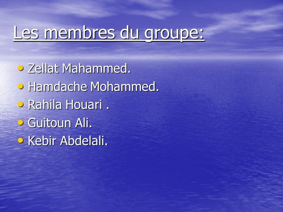 Les membres du groupe: Zellat Mahammed.Zellat Mahammed.