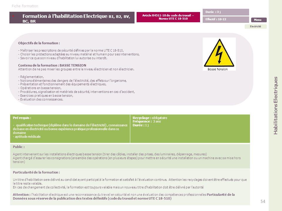 Formation à lhabilitation Electrique B1, B2, BV, BC, BR Objectifs de la formation : - Maîtriser les prescriptions de sécurité définies par la norme UT