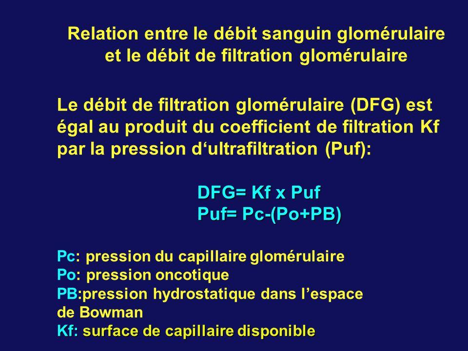Relation entre le débit sanguin glomérulaire et le débit de filtration glomérulaire Le débit de filtration glomérulaire (DFG) est égal au produit du coefficient de filtration Kf par la pression dultrafiltration (Puf): DFG= Kf x Puf Puf= Pc-(Po+PB) Pc: pression du capillaire glomérulaire Po: pression oncotique PB:pression hydrostatique dans lespace de Bowman Kf: surface de capillaire disponible