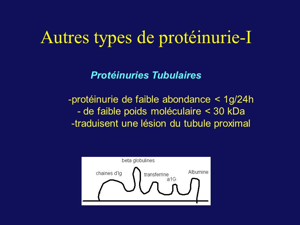 Autres types de protéinurie-I Protéinuries Tubulaires -protéinurie de faible abondance < 1g/24h - de faible poids moléculaire < 30 kDa -traduisent une lésion du tubule proximal