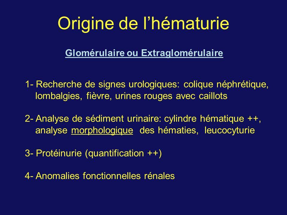 Origine de lhématurie Glomérulaire ou Extraglomérulaire 1- Recherche de signes urologiques: colique néphrétique, lombalgies, fièvre, urines rouges avec caillots 2- Analyse de sédiment urinaire: cylindre hématique ++, analyse morphologique des hématies, leucocyturie 3- Protéinurie (quantification ++) 4- Anomalies fonctionnelles rénales