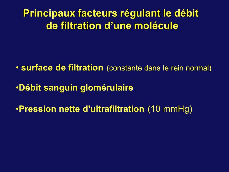 surface de filtration (constante dans le rein normal) Débit sanguin glomérulaire Pression nette d ultrafiltration (10 mmHg) Principaux facteurs régulant le débit de filtration dune molécule