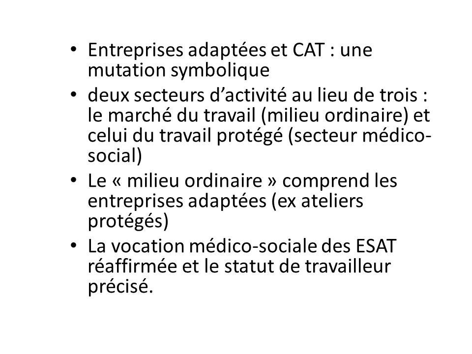 Entreprises adaptées et CAT : une mutation symbolique deux secteurs dactivité au lieu de trois : le marché du travail (milieu ordinaire) et celui du t