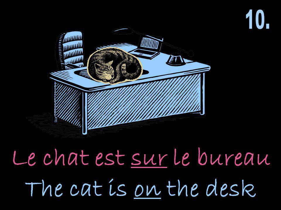 Le chat est sur le bureau The cat is on the desk