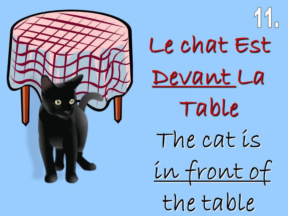 Le chat Est Devant La Table The cat is in front of the table in front of the table